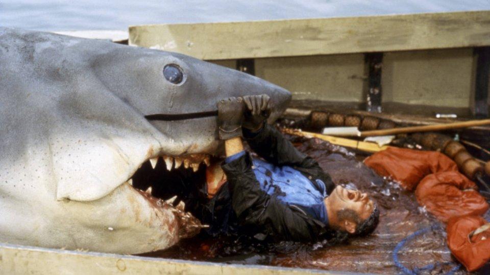 Der weiße Hai Still